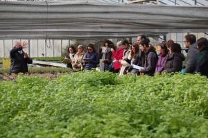 SEMINARI: metodologies de formació per a productors de plantes aromàtiques @ Departament de Territori i Sostenibilitat – Generalitat de Catalunya | Barcelona | Catalunya | España